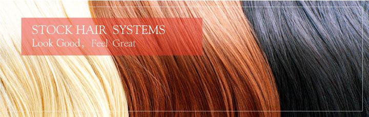 Lagerstück Haar-System